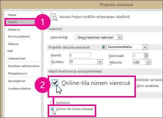 Projectin asetukset, Näytä-välilehti