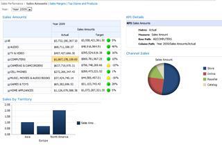 Tyypillinen Raporttinäkymät-ikkuna SharePoint Server 2010:ssä