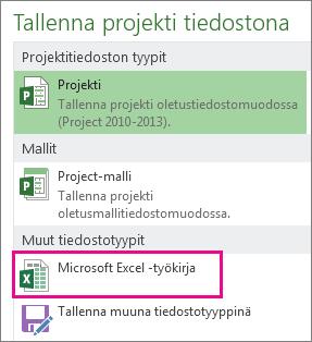 Projektitiedoston tallentaminen Microsoft Excel -työkirjana