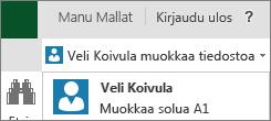 Usea kirjoittaja Excel Onlinessa