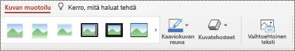 PowerPoint for Macin kuvan valintanauhan Vaihtoehtoinen teksti -painike.