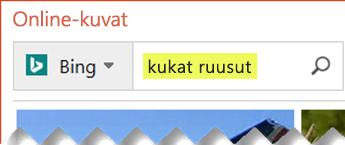 Kirjoita etsimääsi ClipArt-kuvaa kuvailevia hakusanoja