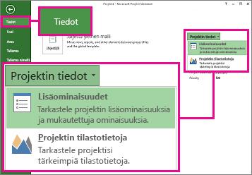 Projektitiedot-valikko, jossa Lisäominaisuudet korostettuna