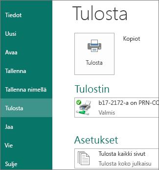 Näyttökuva Publisherin Tulosta-vaihtoehdoista.