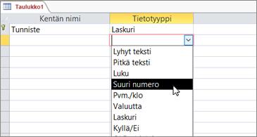 Tietotyyppien luettelo, jossa on Suuri luku -tyyppi korostettuna
