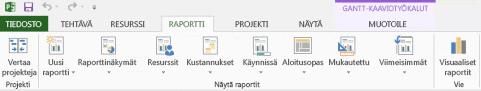 Project 2013:n Raportti-välilehti