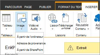 Le bouton Insérer une image avec le menu options source située en dessous.