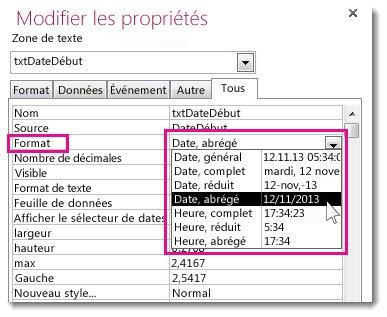 Image de la feuille de propriétés avec la liste déroulante Format affichée