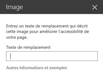 Capture d'écran de la boîte de dialogue Texte de remplacement d'image dans SharePoint.