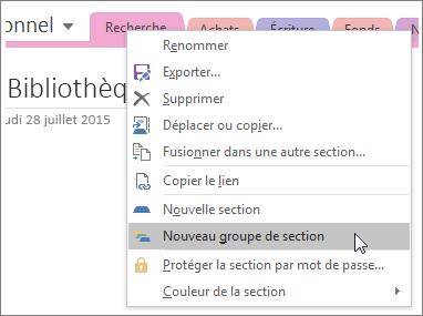Capture d'écran montrant la création d'un nouveau groupe de sections dans OneNote2016
