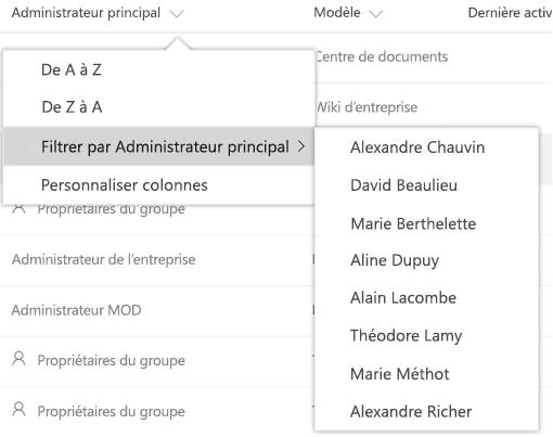 Options de filtrage pour la colonne de modèle