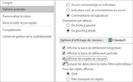 Afficher les onglets de classeur dans les options Excel