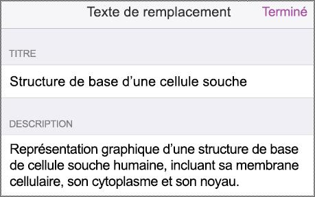 Boîte de dialogue Texte de remplacement sur iPhone