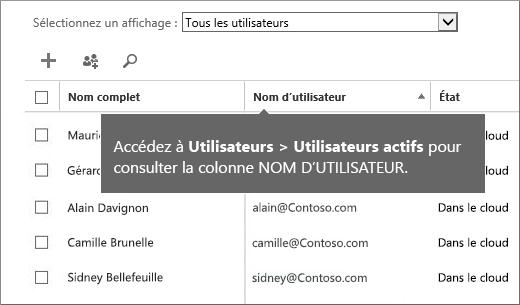 Colonne du nom d'utilisateur dans le Centre d'administration Office365
