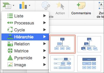 Organigramme - Hiérarchie