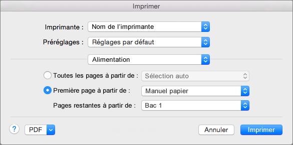 Lorsque vous sélectionnez l'option Alimentation papier dans la boîte de dialogue Imprimer, vous pouvez sélectionner des sources de papier.