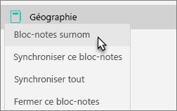 Affiche un bloc-notes d'équipe avec un bloc-notes avec surnom sélectionné