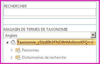 Capture d'écran de l'arborescence dans l'outil de gestion du magasin de termes, montrant le nom de la taxonomie et les dossiers enfants.