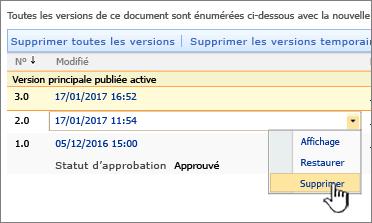 Liste déroulante du contrôle de version sur un fichier avec l'option Supprimer en surbrillance