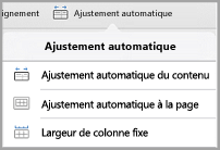 options d'ajustement automatique iPad