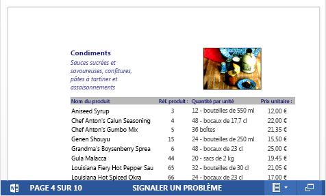 Fichier PDF incorporé d'un catalogue produit affiché dans Word Web App
