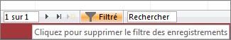 Activation/désactivation du filtre dans le navigateur d'enregistrements