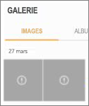 Un fichier image chiffré dans l'application Galerie.