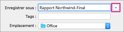Cliquez sur la flèche vers le bas en regard de la zone Enregistrer sous pour développer la vue des dossiers afin d'afficher des raccourcis vers les dossiers et les options d'affichage.