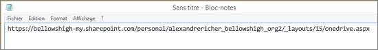 Collez l'URL dans un programme comme Bloc-notes.