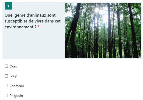 Image d'une forêt affichée en regard d'une question