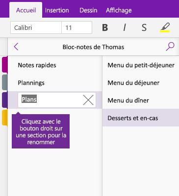 Capture d'écran illustrant l'attribution d'un nouveau nom à une section dans OneNote