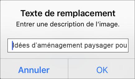 Outlook pour iOS - Texte de remplacement pour le menu d'image