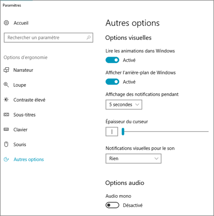 Options d'ergonomie, paramètres du volet Autres options dans Windows 10