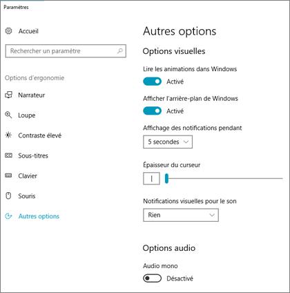 Options d'ergonomie, paramètres du volet Autres options dans Windows10