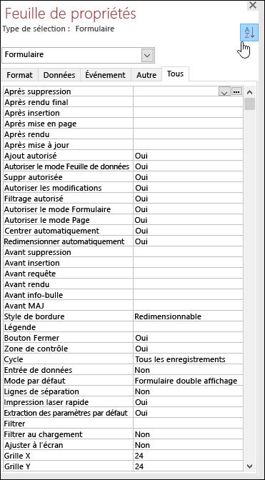 Capture d'écran de la feuille de propriétés Access avec les propriétés triées par ordre alphabétique