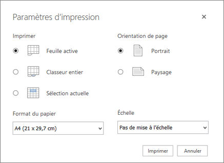 Options des paramètres d'impression après avoir cliqué sur fichier > imprimer