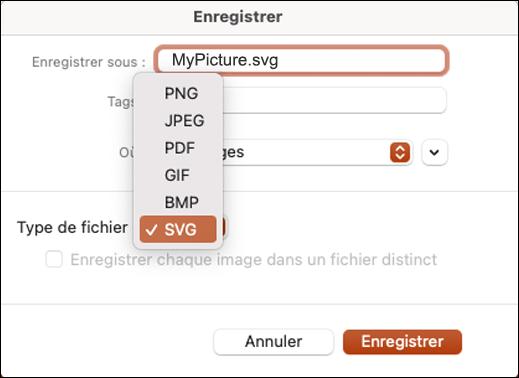 Boîte de dialogue Enregistrer sous dans PowerPoint 2021 pour Mac avec l'option SVG sélectionnée