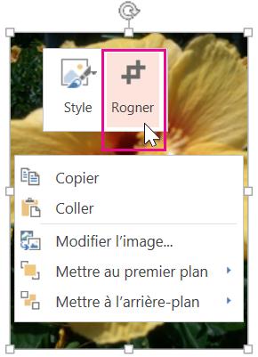 Cliquer avec le bouton droit sur l'image, puis cliquer sur Rogner