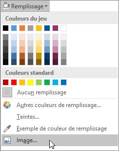 Capture d'écran de l'option Remplissage de l'image de Remplissage de forme sous l'onglet Mise en forme dans Publisher.