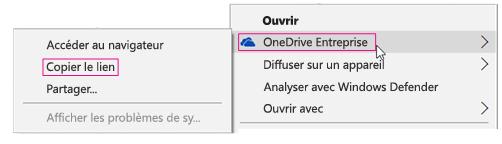 OneDrive Entreprise, Copier le lien