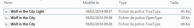 Liste des polices dans le fichier décompressé.