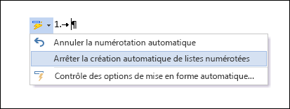 Les options Numérotation sont affichées dans Correction automatique.