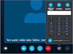 Capture d'écran illustrant le pavé numérique audio