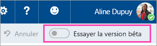 Capture d'écran du bouton bascule d'aperçu
