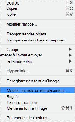 Menu contextuel pour les images avec l'option de texte de remplacement sélectionnée.