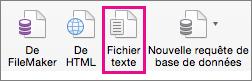 Dans l'onglet Données, sélectionnez Fichier texte