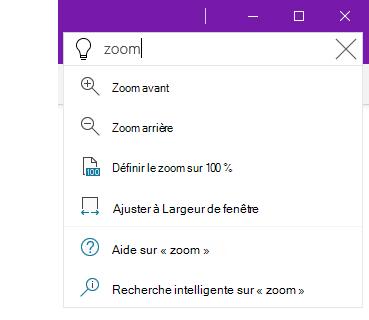 Capture d'écran du système d'aide Rechercher de OneNote