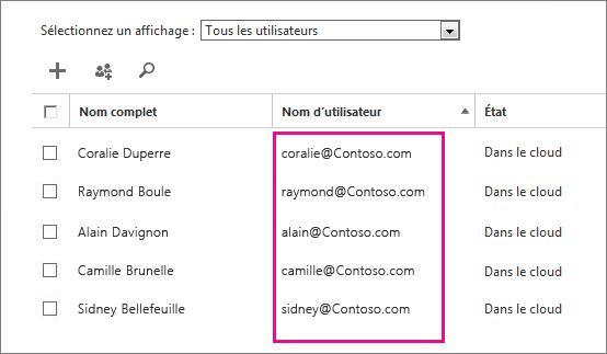 Colonne Nom d'utilisateur dans le Centre d'administration Office365.