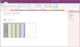Capture d'écran d'un bloc-notes OneNote2016 avec une feuille de calcul Excel incorporée.