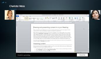 Capture d'écran d'une session de partage de programme avec l'option Taille réelle affichée